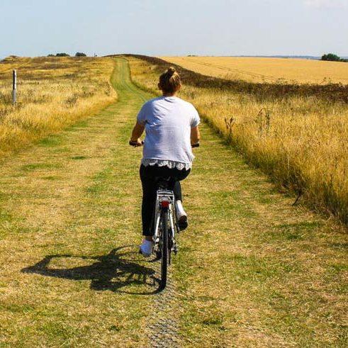 Servizio di percorsi per ciclisti casa vacanze Le Fornaci