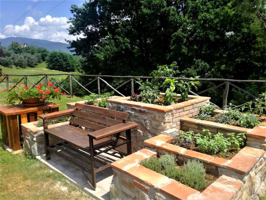 corsi di gestione e cura delle rose, degli olivi e delle piante da frutto, con una lezione teorica e pratica Le Fornaci
